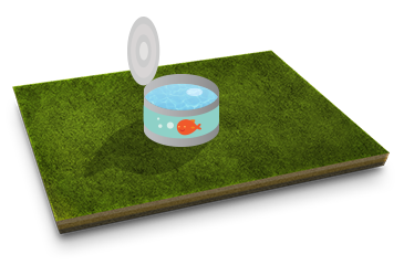 Proper Watering Green Drop